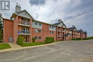 Beautiful and Affordable Ground Floor! Close to All Amenities!