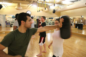 FREE MARTIAL ART LESSONS - GET INTO SHAPE & HAVE FUN!!