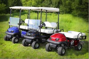 VOITURETTE ÉLECTRIQUE 2016  SANTAFE MINI  Cart golf