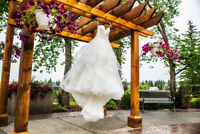 2019/2020 - Canmore / Banff Wedding Photography and Videography