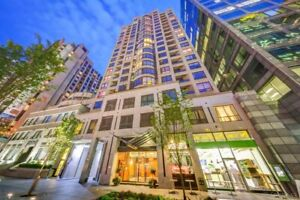 Bachelor condo - Yonge and Bloor - Minimum one year lease