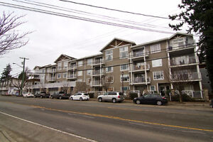 Beautiful 1 br end unit with two large balconies!