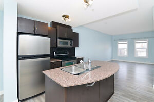 Beautiful Refinished 1 bedroom Condo