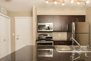 Beautiful Brand New Condo for Rent