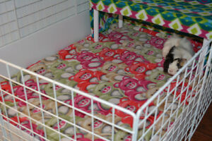 Guinea Pig Cage Liners with Free Small Bag of Treat Hay!