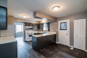 Newly Renovated, Bright and Spacious 3 Bedroom upper level house