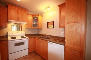 24 Seaborn Street | Potential income | Location! St. John's Newfoundland image 7