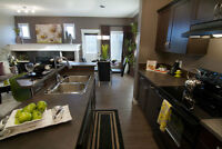 FULLY UPGRADED DUPLEX FOR SALE IN SE EDMONTON-ON PROMOTION