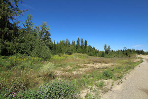 Salmon Arm - Centrally located 8.9 Lot with M-1 zoning