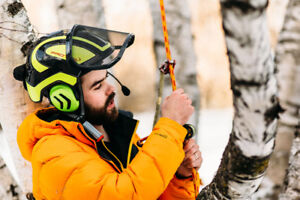 Watch our Video! Tree Ninja - Removals & Pruning
