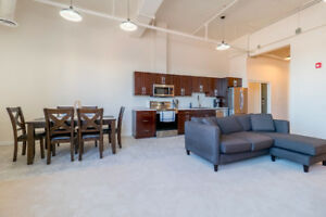 1 BR Brand new modern, fully firnished condo - Short term rental