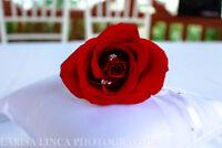 Photos de Mariage / Wedding Photography - Bon Prix / Good price