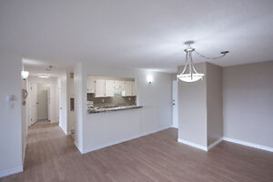Absolutely Beautiful- 2 Bdrm Condo- 5 Appliance- complete reno St. John's Newfoundland image 4