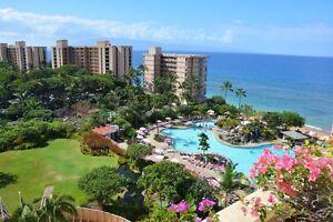 AMAZING DEAL!!  Deluxe Ocean View Condo in Maui