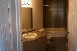 Rooms for Rent!!!! New Build!!! Kitchener / Waterloo Kitchener Area image 3