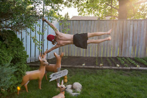 Looking for people to train Calisthenics with at east end YMCA Regina Regina Area image 1