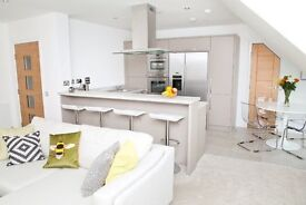Short Term: Immaculately presented 2 bedroom penthouse apartment with lift, parking and balcony