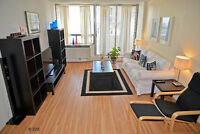 BEAUTIFUL FURNISHED DOWNTOWN AAA LOCATION