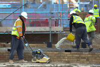 Experienced General Labourers Available