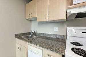 Private, Safe, Central 1 Bed Condo - Perfect for Students Edmonton Edmonton Area image 12