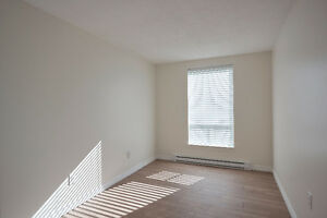Absolutely Beautiful- 2 Bdrm Condo- 5 Appliance- complete reno St. John's Newfoundland image 5