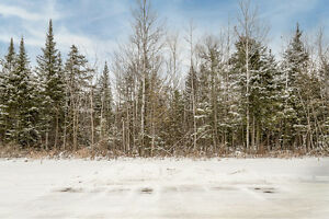 Estate Lot with Natural Privacy - Lot 1A Marni Ln., Springwater