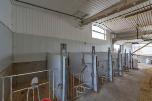 SOLD Prime Dairy Farm in Ingersoll.Jersey Herd, Storage+2 Homes! London Ontario image 4