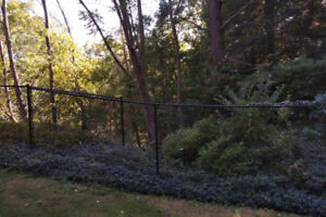 Chain Link Fencing - 5 Feet Tall X 35 Feet - Black