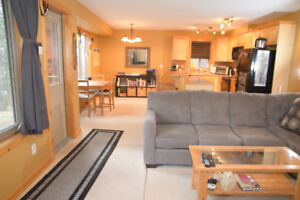 One bedroom basement suite for rent in Canmore!