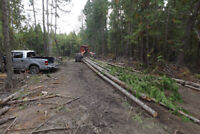 high timber prices,lets help each other