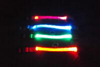 Puppy Dog LED Night Safety Collar