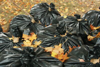 Fall Is Here! Leaf and Lawn Cleanup Service!!