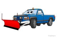 SNOW REMOVAL - (Plow & and Blower Services)