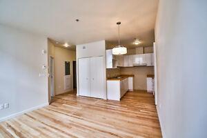 Appartement 3 1/2 entièrement rénové, centre-ville de Sherbrooke