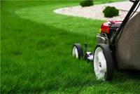 Marshall Mowing Services - Please Text (506) 607 0708
