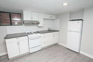 Fully Renovated - 1 Bedroom - Pet Friendly - Lower Level