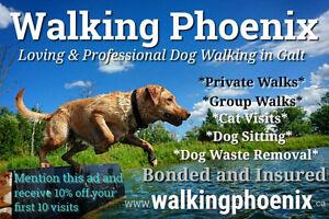 Loving and Professional Dog Walking and Pet Care Cambridge Kitchener Area image 1