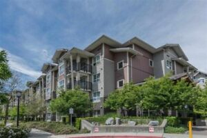 large 2-bedroom 2-bath burnaby south metrotown area