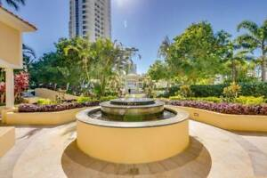 Oasis in Paradise Surfers Paradise Gold Coast City Preview