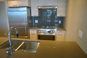 New 2BR, 2 bath apt beside Brighouse Skytrain (Mandarin Res.)