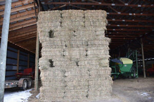 Inventory Clearout on Low Standard Hay