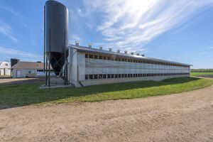 SOLD: Modern ONGOING Dairy Goat Operation in Dutton/Dunwich! London Ontario image 5