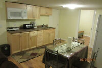 New and Clean Basement for Rent