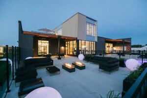 Luxurious all inclusive apartment, Le Plateau