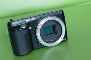 Sony Alpha NEX-F3 (body only)