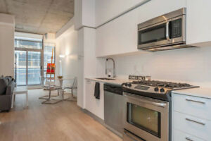 Short Term Lease - Upscale executive 1 Br Loft in Montreal!!!