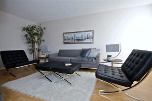 Get Best Value  in Your Neighborhood! Edmonton Edmonton Area image 10