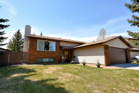 Large Bi-Level in a Highly Desirable Neighbourhood!