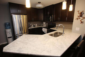 NEWER 2 BED 2 BATH CONDO Edmonton Edmonton Area image 2