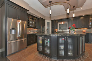 CUSTOM EXECUTIVE PROPERTY BACKING ONTO FORESTED GREEN SPACE! London Ontario image 5